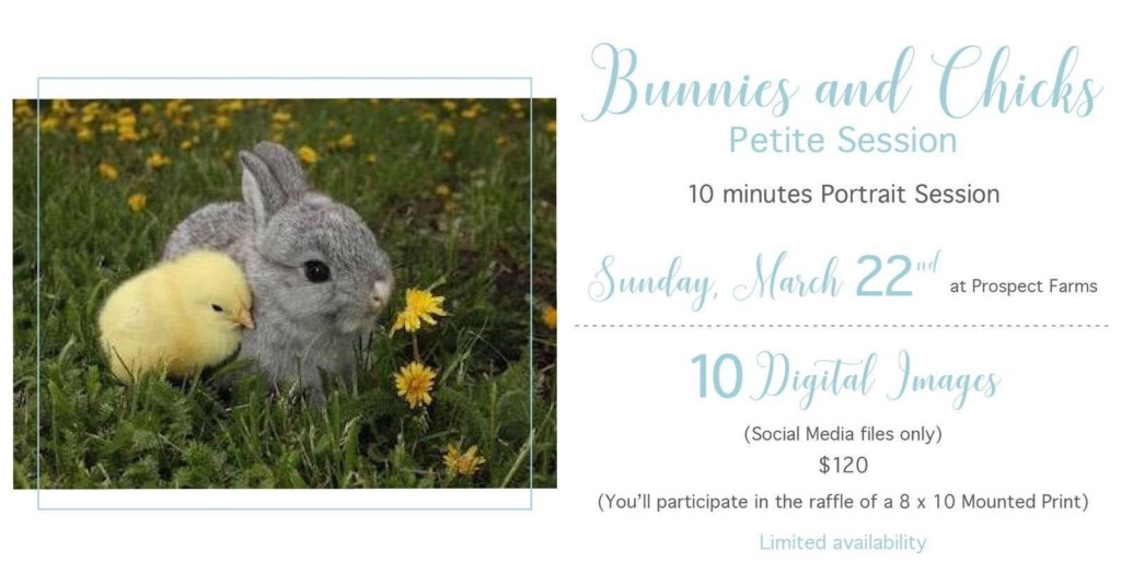 Easter and Spring Photo Sessions